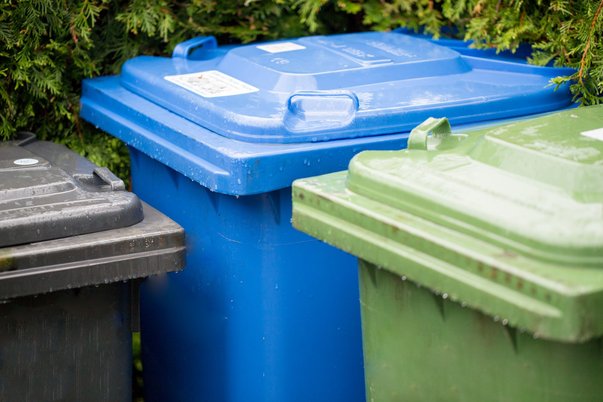 Bin collections in Boston paused for remainder of the week due to Covid-19