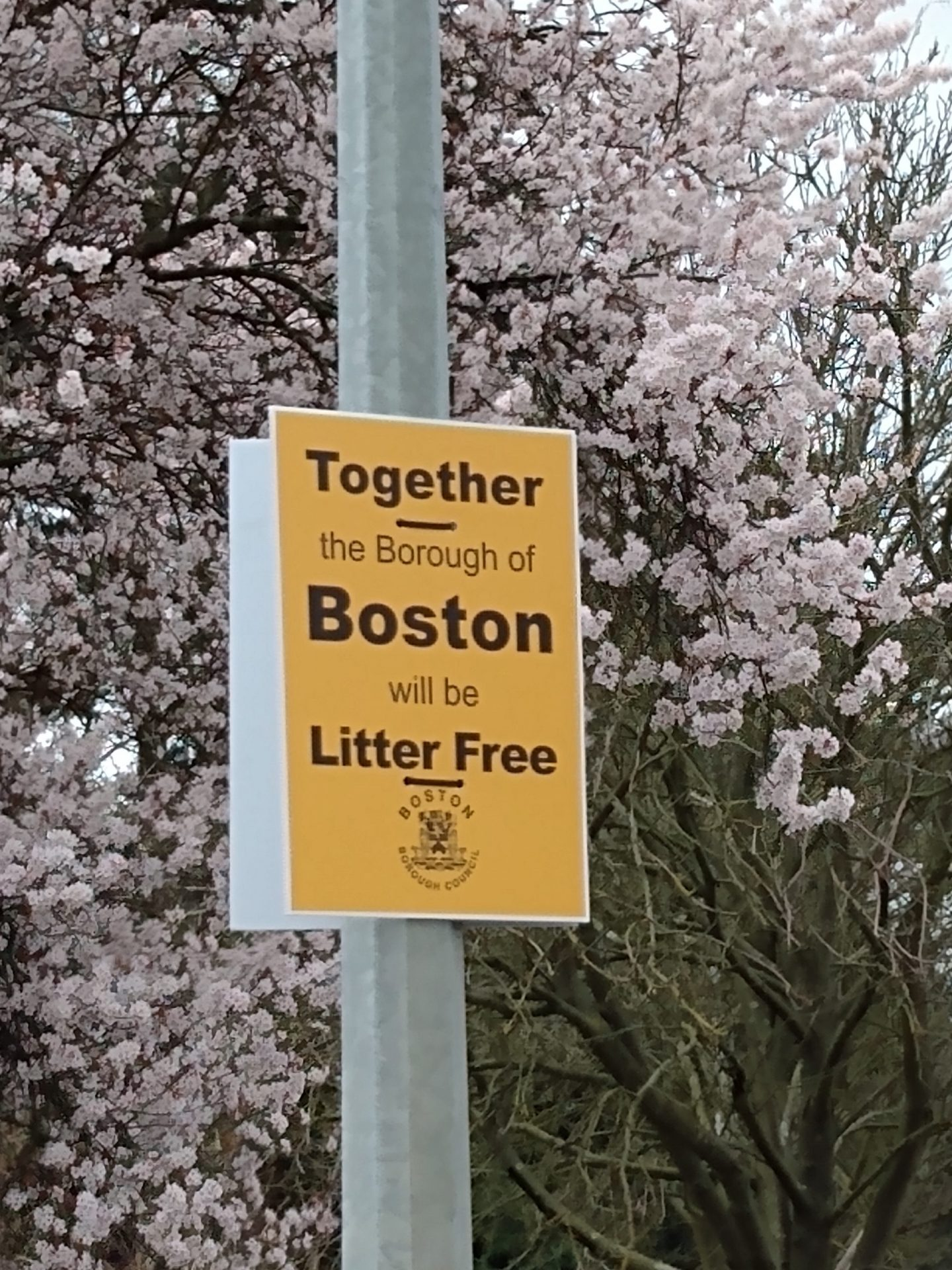 Campaign to crackdown on littering on the lead up to restrictions easing